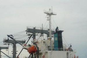 Bán 70% vốn điều lệ một doanh nghiệp vận tải biển lỗ nghìn tỷ
