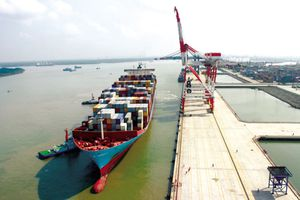 Đại học Hàng Hải Việt Nam bán 70% cổ phần một công ty tải biển thua lỗ
