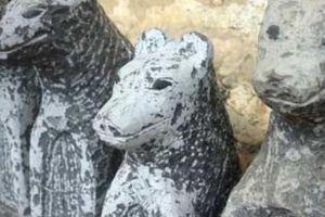 Độc đáo tục nuôi 'thần Thạch khuyển' có một không hai ở xứ Lạng