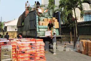 Kon Tum: Phát hiện gần 300 hộp tân dược không rõ nguồn gốc trên xe biển số Lào