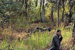 Phát hiện thi thể cô gái chết cháy gần thác Datanla Đà Lạt