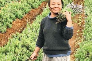 Lạc vào vườn hoa oải hương lớn nhất Đà Lạt của cô gái 'ở ẩn'