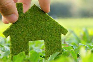 Bangladesh phát triển kinh tế xanh