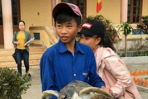 Vĩnh Linh (Quảng Trị) khen thưởng học sinh cứu và thả rùa về biển