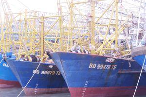 Vững tin vươn khơi với tàu vỏ thép