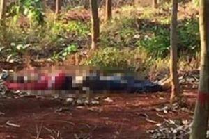 NÓNG: Phát hiện 2 bố con bị sát hại dã man, cắt lìa cổ ở Lạng Sơn