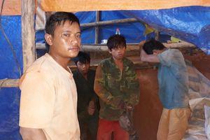 Kon Tum: Nhóm khai thác vàng trái phép bị xử phạt 510 triệu đồng