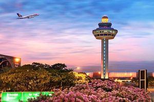 Jetstar Airlines cảnh báo chuyển hướng bay tránh Changi