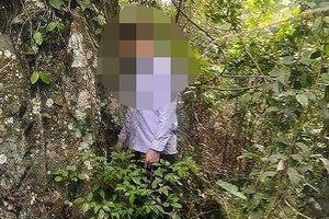 Nghi can sát hại hai bố con đi lấy mật ong đã tự tử trong rừng