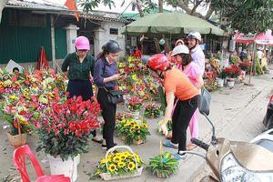 Thành Vinh tràn ngập hoa ngày 8/3