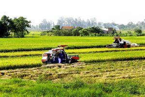 Gỡ nút thắt cho nông nghiệp