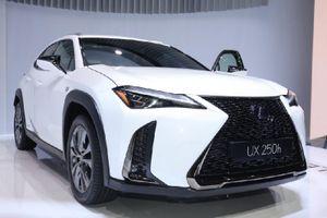 Cận cảnh mẫu Lexus UX hoàn toàn mới