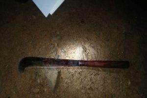 Chồng dùng dao chém vợ, sát hại con gái rồi tự tử