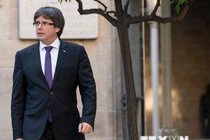 Tây Ban Nha: Catalonia đề xuất tổ chức cuộc trưng cầu ý dân mới