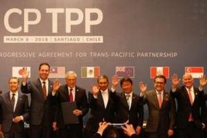 Lĩnh vực nào ảnh hưởng lớn nhất khi Việt Nam tham gia CPTPP
