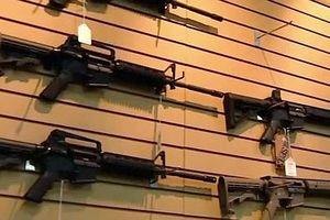 Mỹ: Bang Florida thông qua dự luật kiểm soát súng