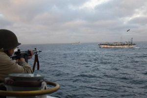 Đánh cá trộm, 5 tàu cá Trung Quốc bị truy bắt quốc tế
