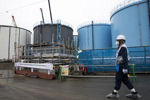 Nhật Bản điều tra vụ người Việt bị lừa làm việc ở khu nhiễm phóng xạ