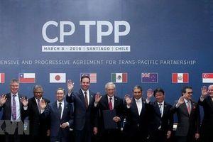 Doanh nghiệp kỳ vọng vào hiệu ứng tích cực của CPTPP