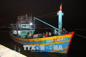 Đà Nẵng: Cứu tàu cá cùng 11 ngư dân gặp nạn trên biển
