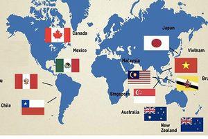 Nhật Bản sẽ thúc đẩy để Hiệp định CPTPP có hiệu lực trong năm 2019