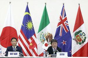 Quốc tế đánh giá cao vai trò của Việt Nam trong việc ký kết CPTPP