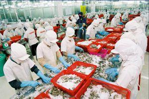 Sẽ tôn vinh 96 sản phẩm, dịch vụ thương hiệu Việt tiêu biểu