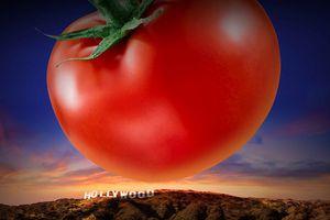 Rotten Tomatoes: Chuẩn mực hay sự hủy hoại nền phê bình điện ảnh?