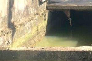 Hai em bé tử vong bên chiếc xe đạp dưới mương nước