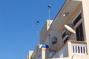 Cuộc chiến giữa tiếng chim yến và chim cú giữa khu dân cư