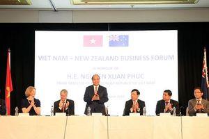 Doanh nghiệp New Zealand muốn cải thiện quan hệ thương mại với Việt Nam