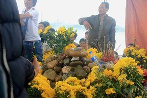 Người dân vẫn khấn vái ở ngôi mộ có 'rắn thần' ở Quảng Bình