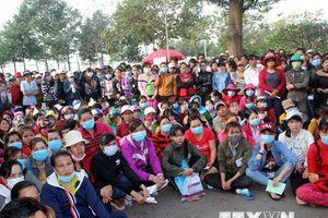 1.647 công nhân bị chủ nước ngoài bỏ rơi trước Tết đã được tiếp nhận