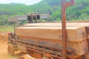 Xác định 7 đối tượng trong vụ bắt đoàn xe chở gỗ lậu ở Đắk Lắk