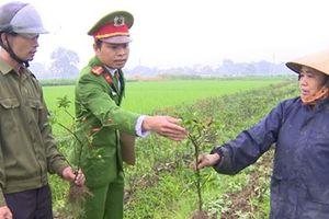 Điều tra vụ việc 4 sào ớt chết cháy ở Yên Định