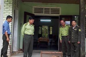 Thừa Thiên – Huế: Thả cá thể mèo rừng về môi trường tự nhiên