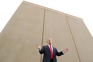 Tổng thống Trump nghiệm thu bức tường mẫu tại biên giới với Mexico