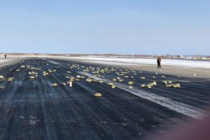 Cửa máy bay gặp sự cố khiến hàng tấn vàng rơi xuống mặt đất