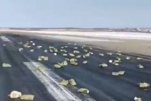 Cửa máy bay Nga bị hỏng khiến hơn 200 thỏi vàng rơi ra ngoài