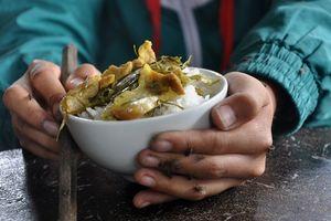 Ô nhiễm kinh hoàng: Ruồi bâu, nhặng đậu kín bát cơm, chén nước
