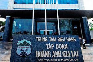 Thương vụ nghìn tỷ HAG mua Hưng Thắng Lợi: Liệu đã 'về một nhà' từ trước?