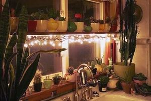 Nếu có dải đèn Led trong tay, bạn sẽ dùng nó trang trí thế nào cho nhà bếp?