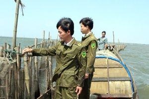 Tái diễn nạn trộm cắp thủy sản bằng xung điện trên phá Tam Giang