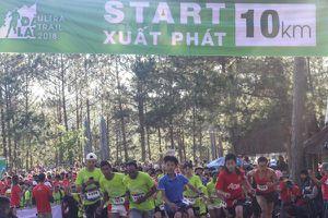 Dalat Ultra Trail 2018 tiếp tục với đường chạy 10 km