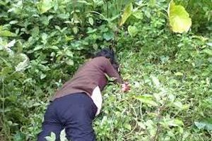 Hưng Yên: Điều tra vụ nghịch tử chém chết mẹ già 99 tuổi
