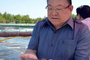 Chủ tịch Hội NDVN khen cách nuôi tôm siêu thâm canh lãi 600 triệu