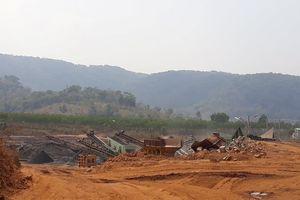 Tạm dừng hoạt động mỏ đá làm ảnh hưởng vườn cà phê