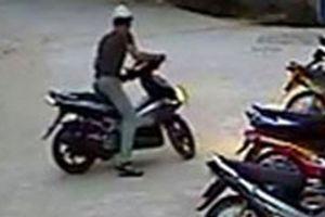 Người quản lý quán ăn trộm xe bị bắt