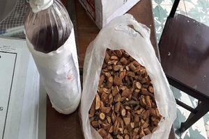 4 người tử vong do uống rượu ở Nghệ An: Chai rượu ngâm có thành phần cây lá ngón