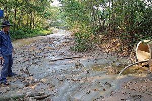 Mỏ vàng Bồng Miêu xả thải ra sông, môi trường ô nhiễm nặng